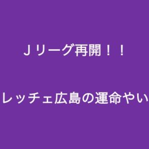 """<span class=""""title"""">Jリーグが再開する。サンフレッチェ広島の運命やいかに? The J-League resumes. What is the fate of Sanfrecce Hiroshima?</span>"""